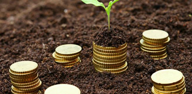 Polska traci kilka miliardów euro, w tym 1,2 mld w dopłatach bezpośrednich.