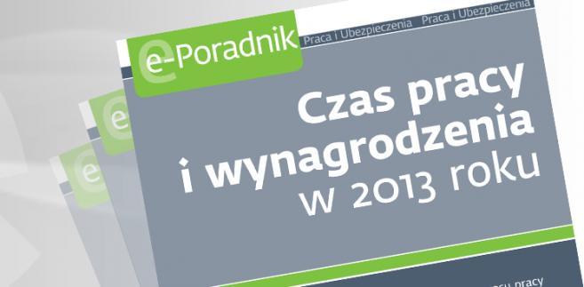 e-book: Czas pracy i wynagrodzenia w2013 roku