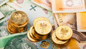 Najwięcej pieniędzy fiskus traci z powodu szarej strefy (zostaje w niej VAT o wartości 25 mld zł) i wyłudzeń podatku (27 mld zł).