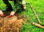 AMW rozbraja wojsko? Agencja pozbywa się starych min przeciwpiechotnych