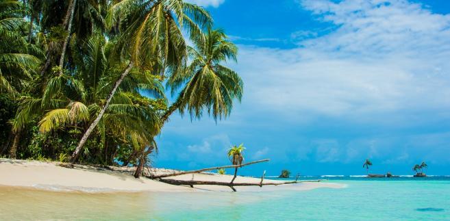 Ferie zimowe pod palmami? Sprawdźcie, gdzie najlepiej wyjechać w 2018