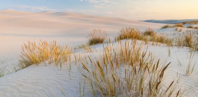 Jak podała we wtorek na swojej stronie internetowej WSSE, pierwsza na północ od Gdyni plaża, w której można się kąpać jest w Rewie.