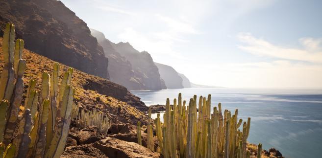 Czym różnią się od siebie Wyspy Kanaryjskie? Ich różnorodność Cię zaskoczy