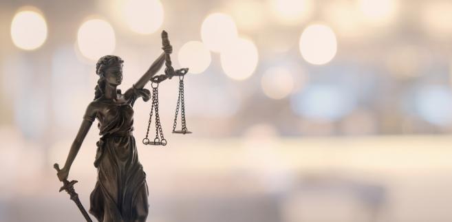 Instytucja przedawnienia ma na celu ochronę dłużnika przed wierzycielem, który zwlekał z dochodzeniem roszczenia zbyt długo.