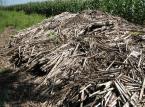 Ekolodzy będą produkować nad Biebrzą brykiet z biomasy