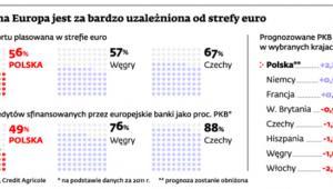 Centralna Europa jest za bardzo uzależniona od strefy euro