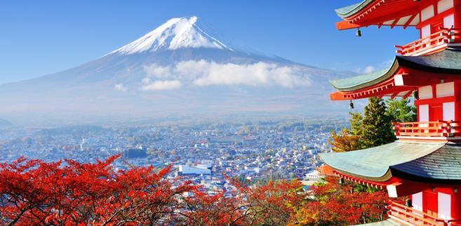 Itsukuszima, Fudżi, park Ueno. 7 miejsc, które warto zobaczyć w Japonii