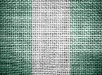 Kolejni kibice z Nigerii zatrzymani na przejściu w Gronowie