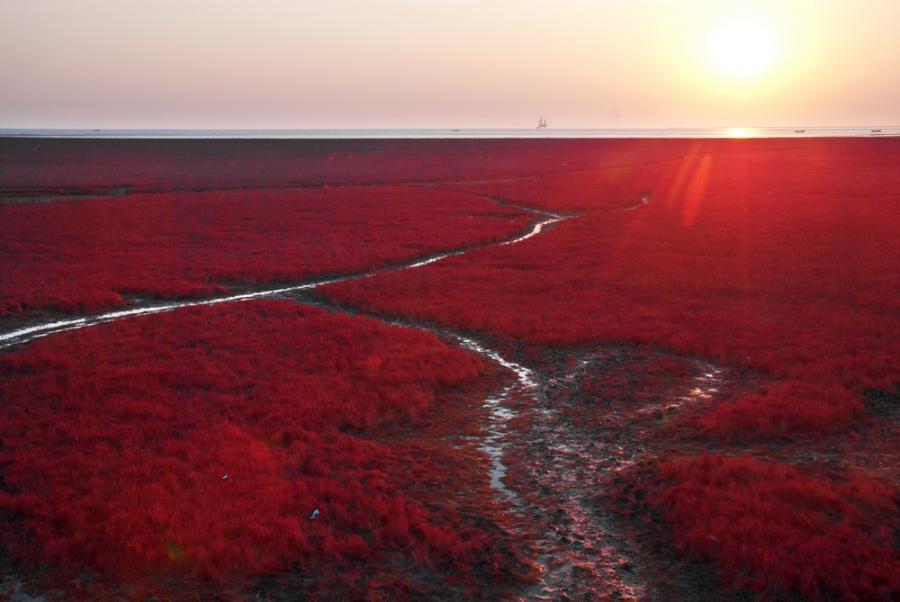 Czerwona plaża