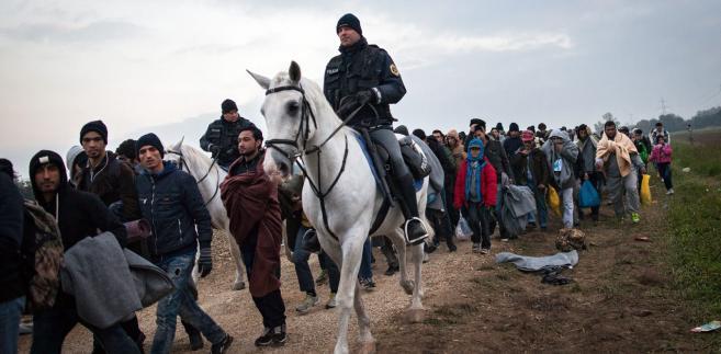 Austria imigranci
