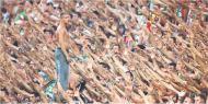 Legia dogadała się z kibicami, nowy stadion będzie pełny