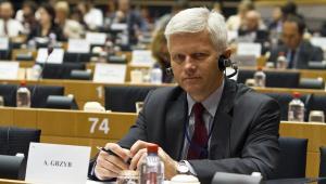 Andrzej Grzyb, europoseł