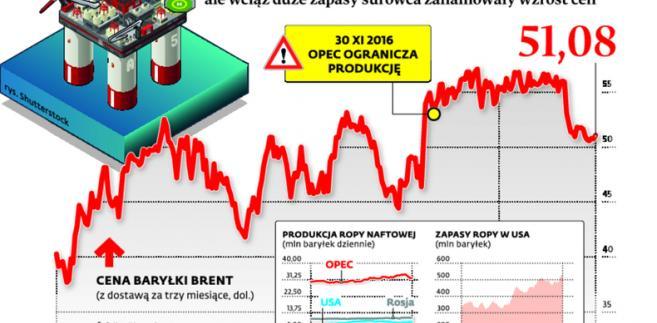 OPEC ograniczył produkcje ropy, ale wciąż duże zapasy surowca zahamowały wzrost cen