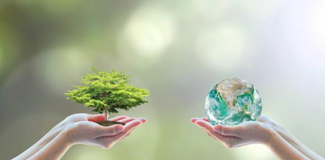 Resort środowiska, jeśli zdecyduje się na przygotowanie projektu, będzie musiał stoczyć batalię z Ministerstwem Rozwoju