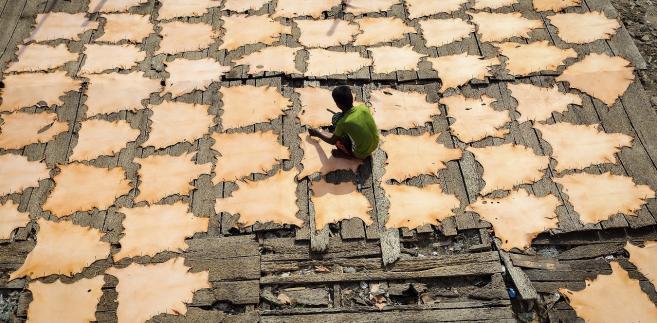 pracownik garbarni w Indiach