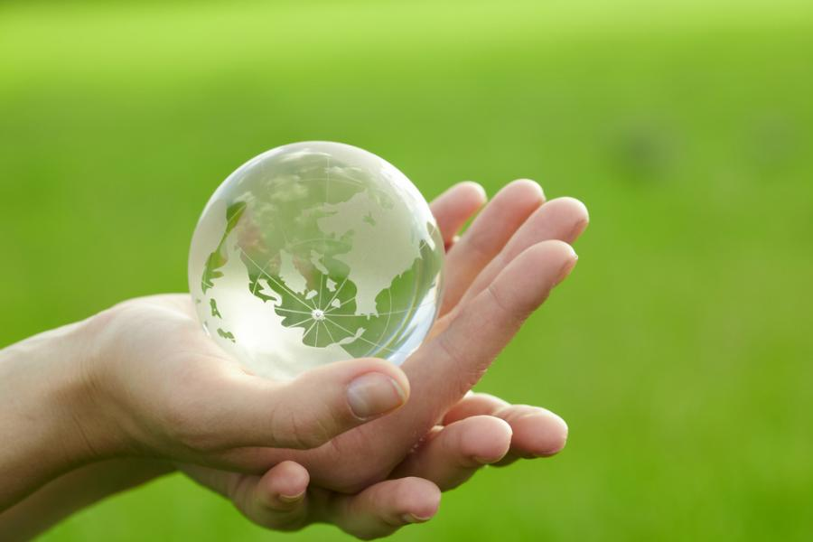 ekologia (fot. shutterstock.com)