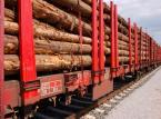 Tarcza antykryzysowa pozwoli branży drzewnej złapać oddech