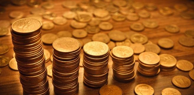 NBP zakłada także w kolejnych miesiącach umocnienie złotego. Ale zdaniem ekonomistów nie będzie to już miało tak wielkiego znaczenia