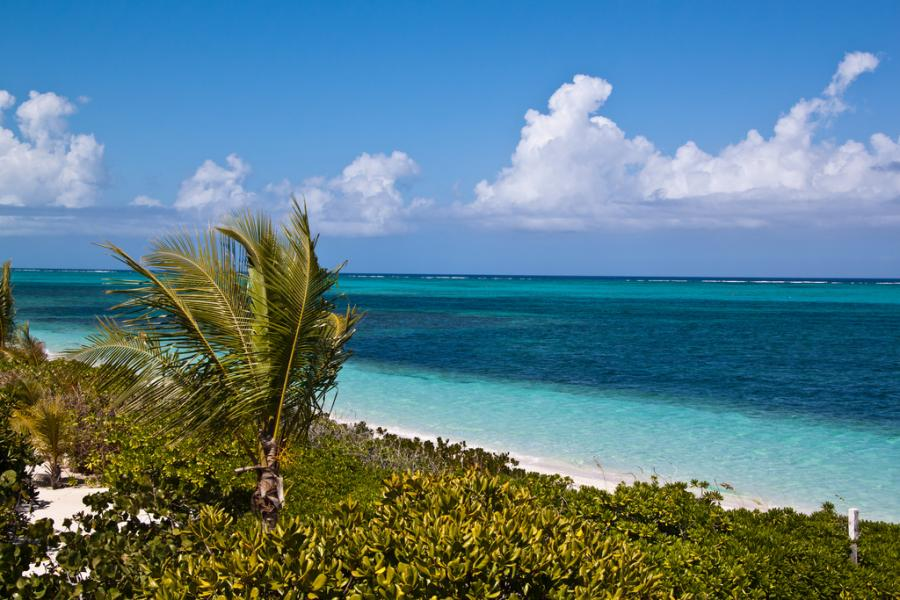 Plaża Providenciales, wyspy Turks and Caicos. Fot.flickr/timsackton
