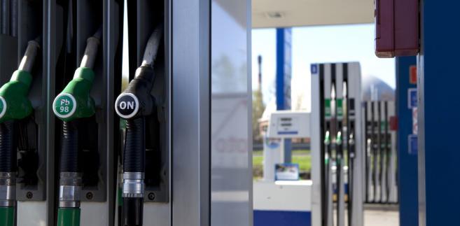 Niskim cenom na stacjach zagraża za silny wobec złotego dolar